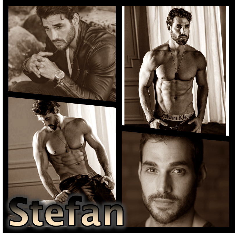collage Stefan