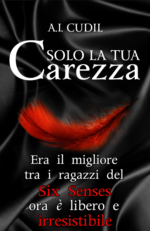 teaser solo_la_tua_carezza_cop